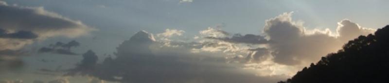 Cropped Dawn.jpg
