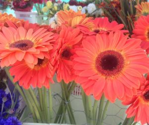 Flowers by Bob Reid