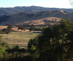 Paicines Ranch View2.jpg