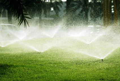 lawn-sprinklers-4241_0174410.jpg