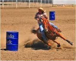 rodeo image.jpg