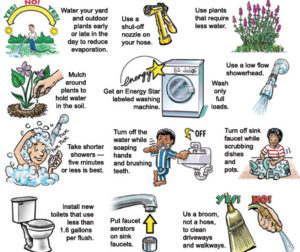 Simple ways you can save water in your home