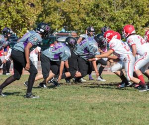 Vikings vs Wildcats.jpg