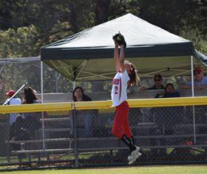 outfielder robbing ball.jpg