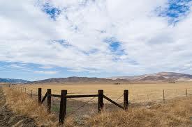 panoche valley scene.jpg