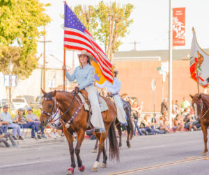american flag horses.jpg