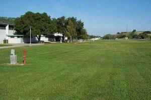 bolado park grass.jpg