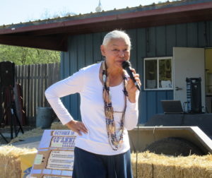 Ann Marie Sayers at a local event in 2015. File Photo.