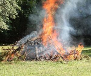 backyard burning.jpg