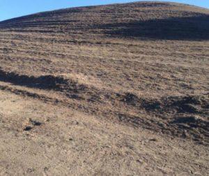 dry hills.jpg