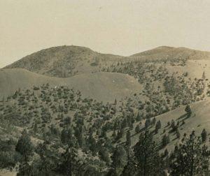 San Carlos Creek (San Benito Mountain), 1915