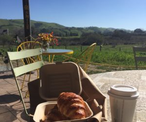 Suncoast Organic Farm and Bakery View.jpg