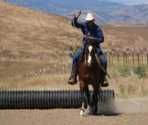 Roping and other ranch-type activities are held during extreme cowboy race.