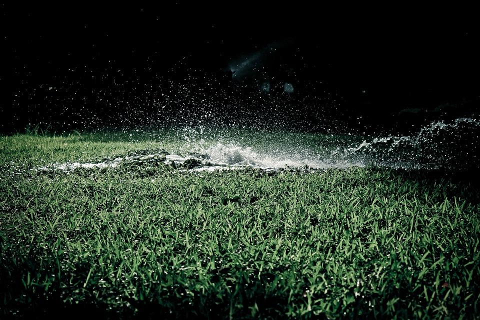 watering grass.jpg