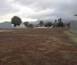 Blighted McCarthy Street Park in Hollister
