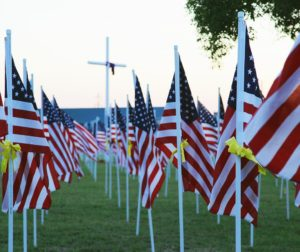 flags in cemetery.jpg