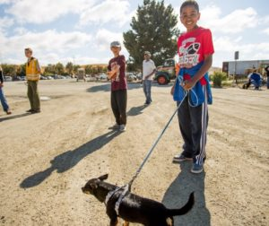 Ibbie Peters, 13, right, stands with his dog Jack Jack, a four-year-old miniature Pinscher..jpg