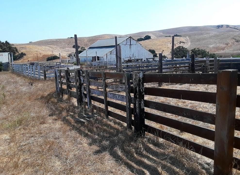 Historic Mudstone Barn.jpg