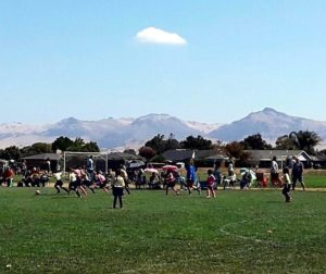 Soccer at Veteran's Memorial Park. Photo by Jim Ostdick