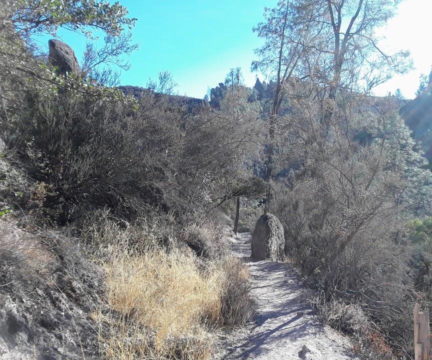 Condor Gulch Trail 1.jpg