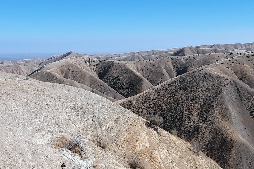 Panoche Hills 9.jpg