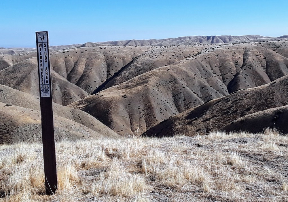 Badlands topography in the Panoche Hills Recreation Area. Photo by Jim Ostdick.