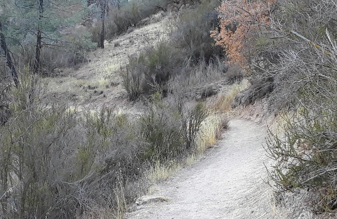 Balcones cliff trail 2.jpg