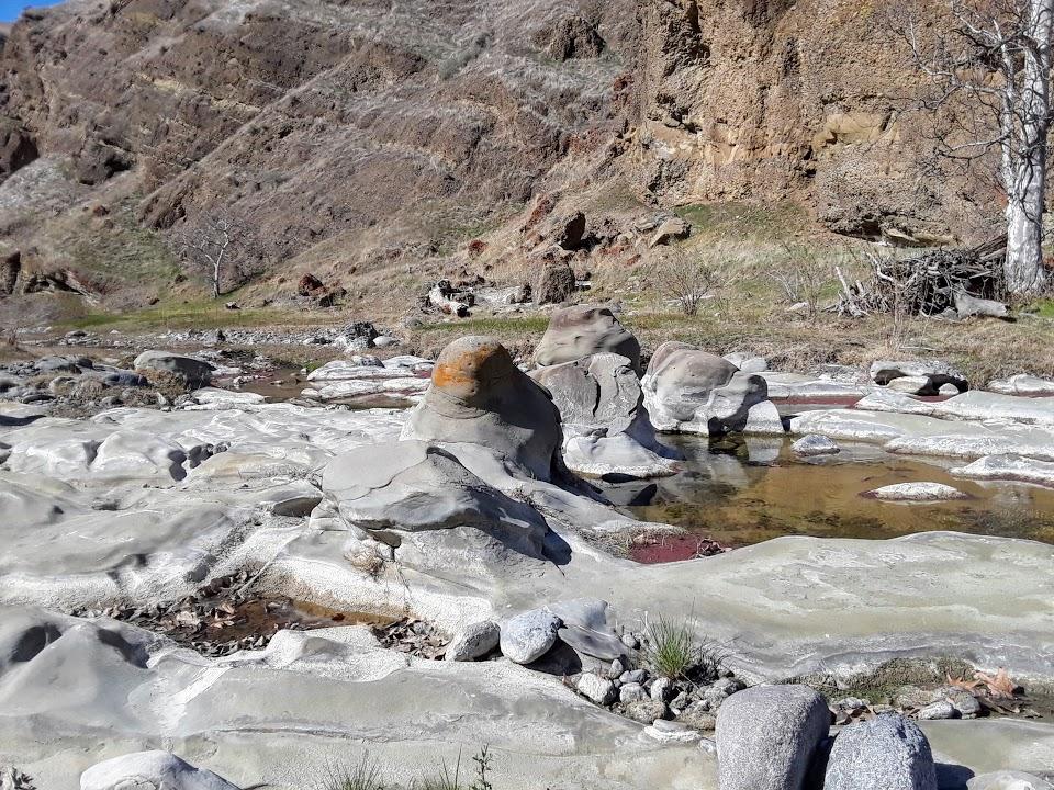 Los Banos Creek POP.jpg
