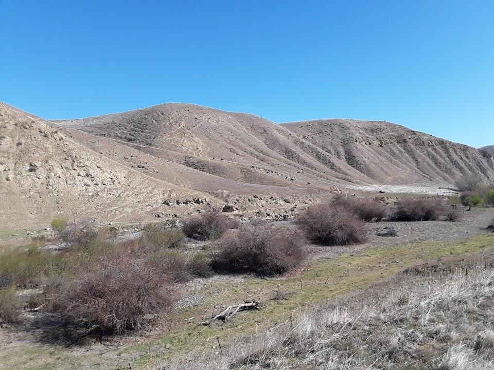 Los Banos Creek wide view POP.jpg
