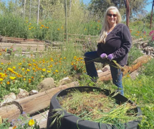 Robin Pollard clears weeds to the compost bin to give flowers more room to grow