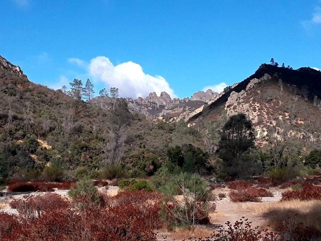 Peaks View at Pinnacles National Park. Photo by Jim Ostdick