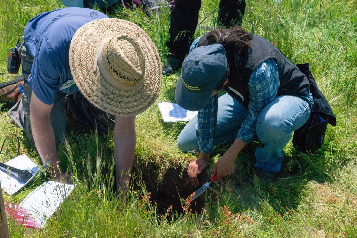 Soil SequestrationBR.jpg