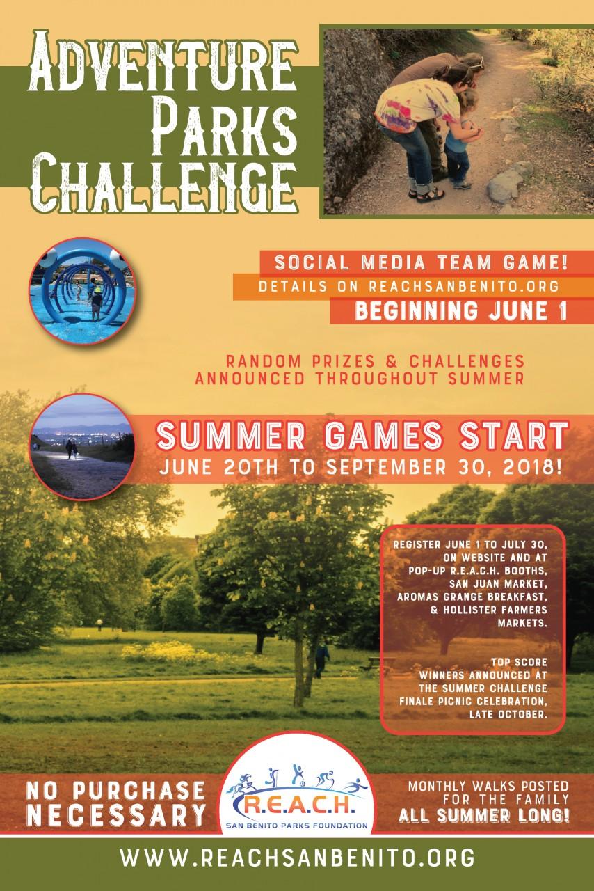 REACH Challenge Poster jpeg.jpg