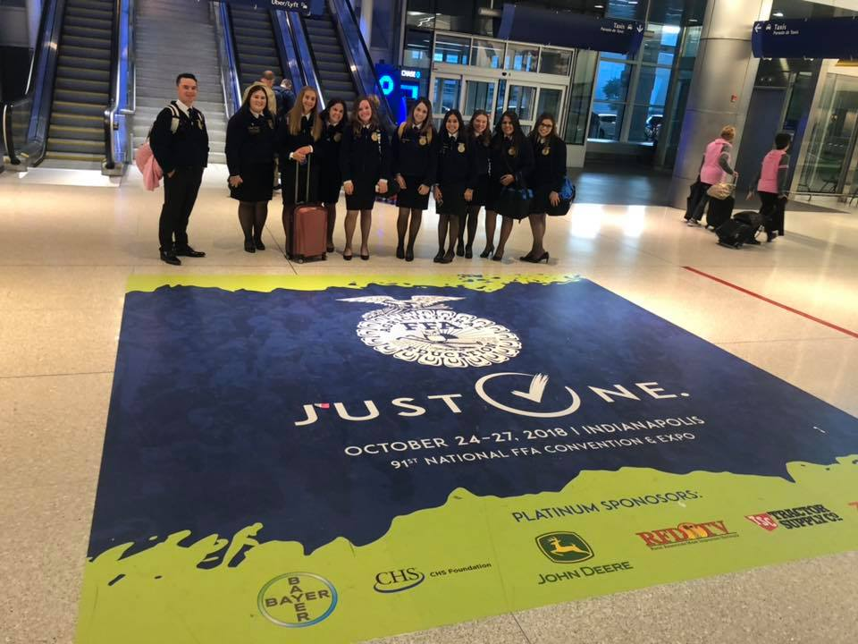Hollister FFA attending the 91st annual National FFA Convention. Photo courtesy of Hollister FFA.