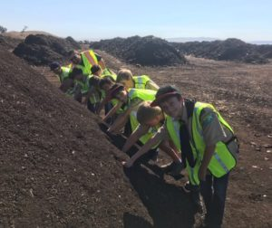 Hollister Boy Scout Troop 436 reaching into a pile of compost at Recology's South Valley Organics facility in Gilroy. Photo provided.