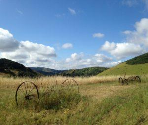 Rolling hills near the Vergeles Fault. Photo by Ilia Carson-Letelier.