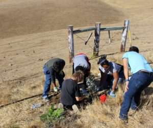 Students using teamwork to plant a sage plant. Photo courtesy of Karminder Brown/SBWLG.