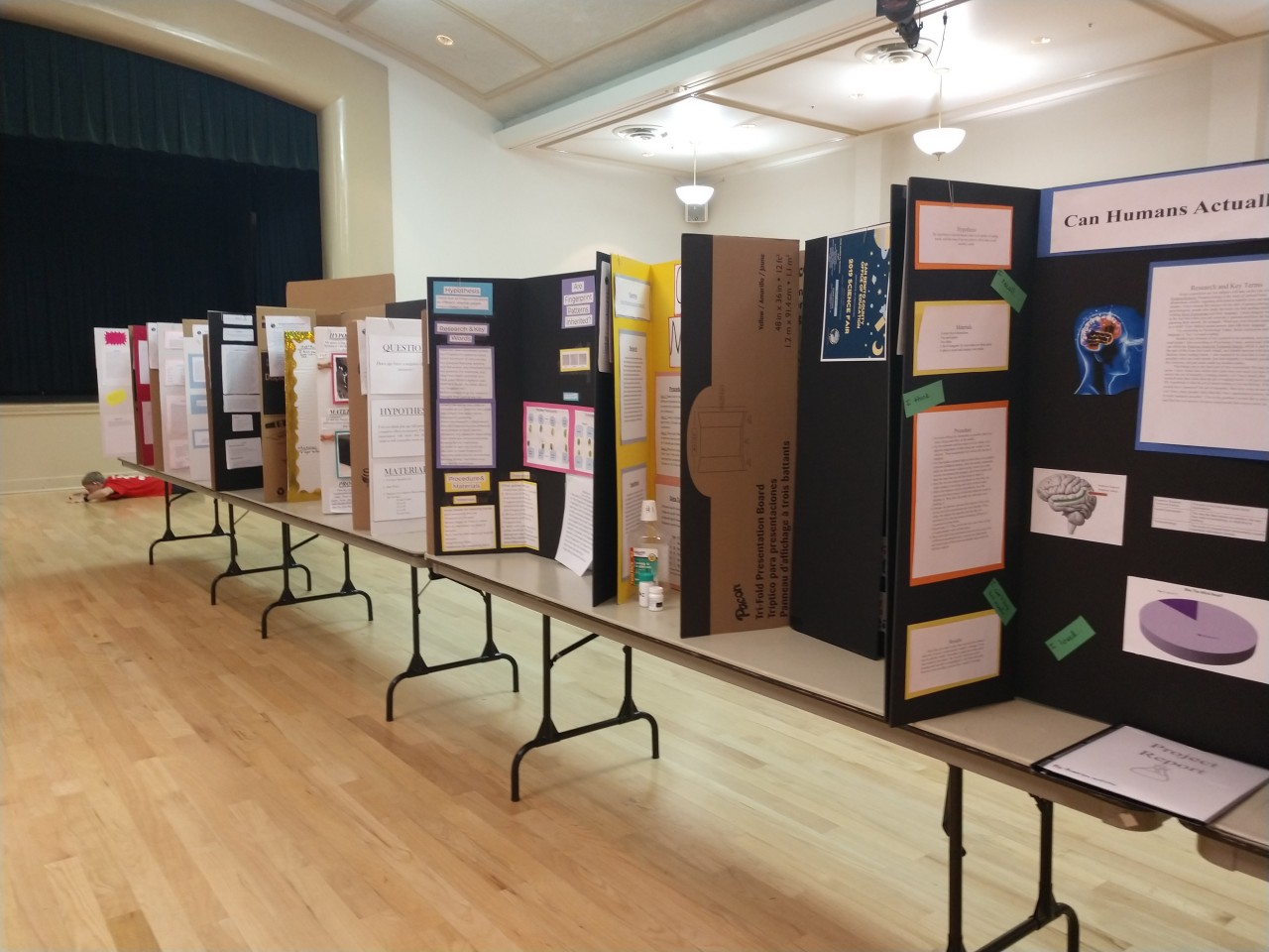 Science projects lined up in the Veterans Memorial Building. Photo by Carmel de Bertaut.