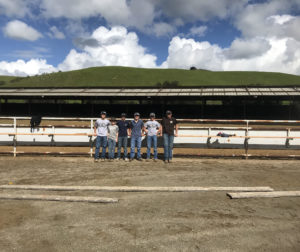 Garrett Mansmith and other 4H members repairing the Bolado Park rodeo grounds. Photo provided by Shannon Mansmith.