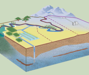 Groundwater profile. Image provided by Shawn Novack.