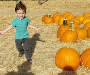 There is a favorite pumpkin awaiting everyone at the Harvest Hope for a Cure Event at San Benito Historical Park.