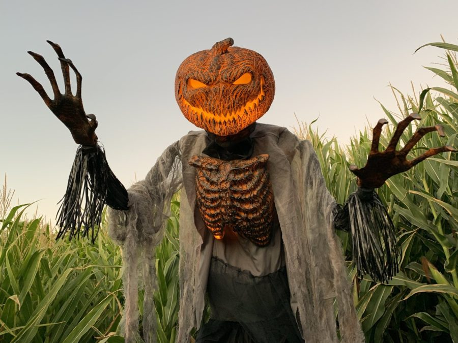Swank Farms' Lights and Frights is open for a few more nights on Oct. 25-27 and Halloween evening. Photos by Robert Eliason.