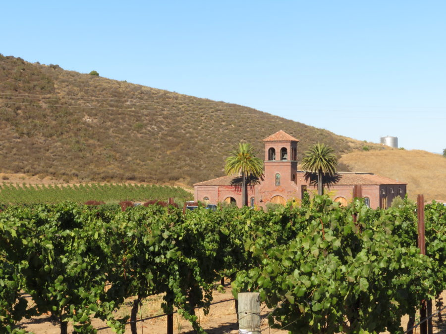 Eden Rift is said to be one of the oldest, continually producing estate vineyards in California.