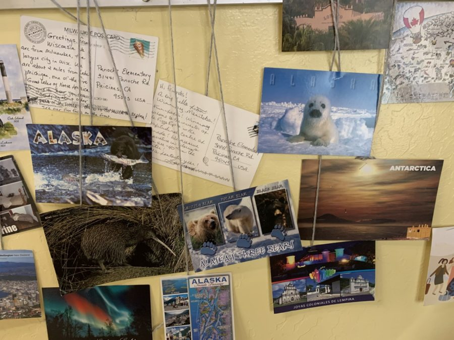 A sample of some of the postcards. Photo provided by Amanda McCraw.
