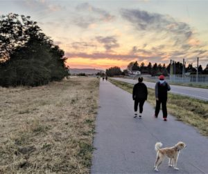 Starting your New Year's fitness routine can be as simple as taking a walk around your community. Photo by Becky Bonner.