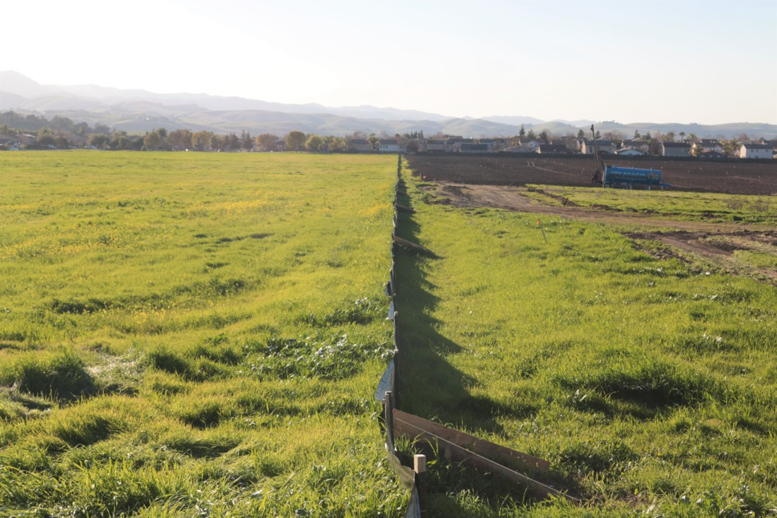 The dividing line between the Roberts Ranch and West of Fairview development projects. Photo by John Chadwell.