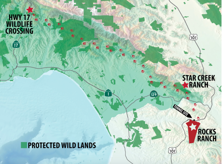 Image from the Land Trust of Santa Cruz County.