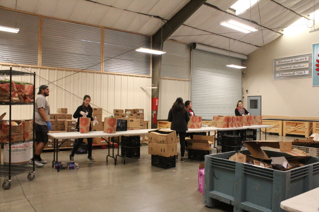 Volunteers bag food in the facility in March. Photo by Carmel de Bertaut.