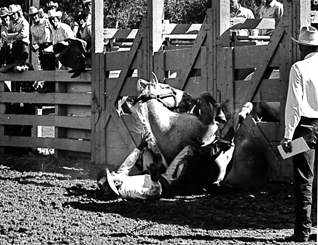 Popcorn riding Joe Frusetta. Everyone survived the experience. Popcorn started out as a riding horse but blew up one day and became a famous member of the Bolado rough stock. Photo courtesy of Saddle Horse Show and Rodeo.