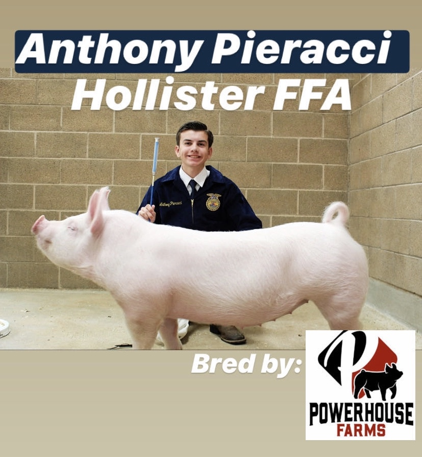 Anthony Pieracci, senior at San Benito High School, posing with his market hog. Photo provided by Anthony Pieracci.